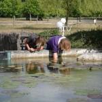 visite aquarium 18 juin 2011-01