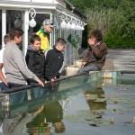 visite aquarium 18 juin 2011-02