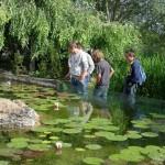 visite aquarium 18 juin 2011-13
