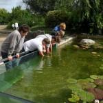 visite aquarium 18 juin 2011-40