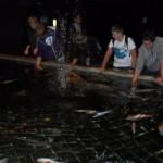 visite aquarium 18 juin 2011-42